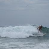 Surfer, Gillis