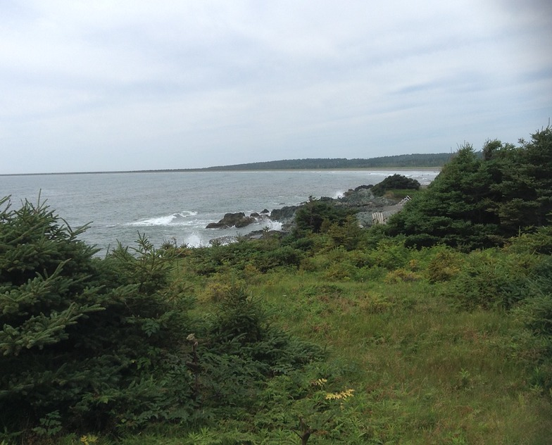 Rugged coast, Michaud Point
