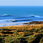 Waiwakaiho
