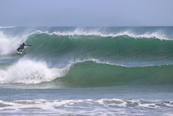Solid Lefts, Langosta photo