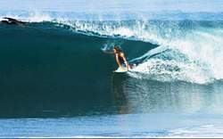 Abel estopin gliding under what inspired him before he surfed (pelicans) in paradise, Cuyutlan photo