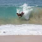 I like surfing, Baldwin Beach Park