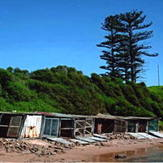 boat sheds, Sandon Point
