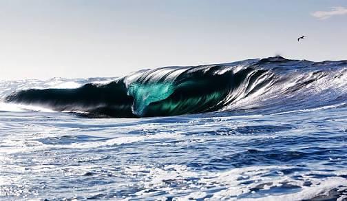 Big surf by Jake Edwards, Fingal Bay