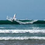 La Palue Windsurfing