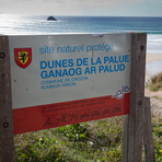 La Palue Dunes