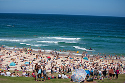 New Years Day 2016, Bondi Beach photo