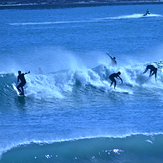 Packed out at Lyall Bay