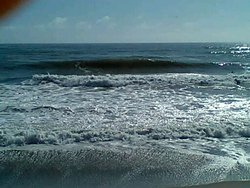 Nice Lil Shorey at Home., Matata photo