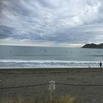 Normal Lyall Bay