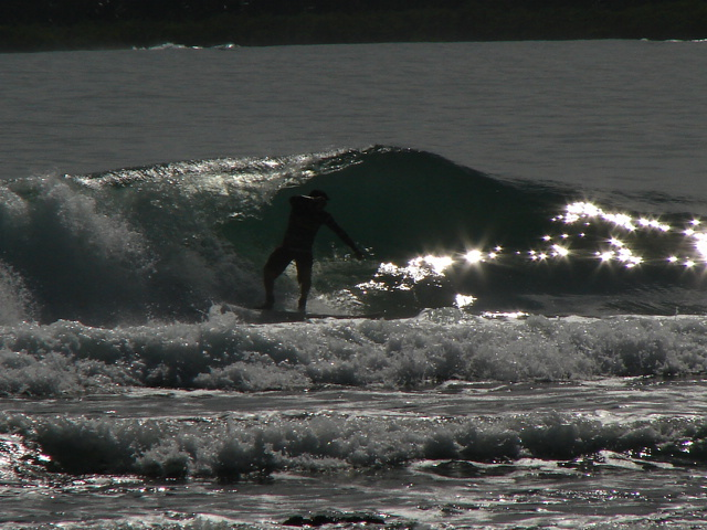 pirates cove left hander