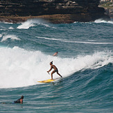 Charlotte paddle boards Bronte, Bronte Beach