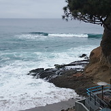 poundy pound, Laguna Beach