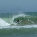 Barrell, Lyall Bay