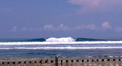 Jackals at  Casarina  Simeulue Surf Resort photo