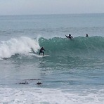 4-5ft clean, Banks Peninsula - Magnet Bay