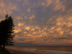 Sunset at Pines, Wainui Beach - Pines photo