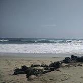 BSCDB 2016 Beach trip 001, Laguna Beach