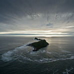 Worm's Head, Crabart