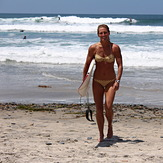 Cardiff Surfer Girl, Turtles
