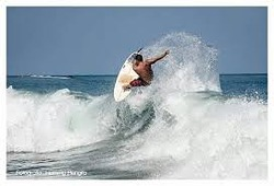 Junior surfer, Mamo photo