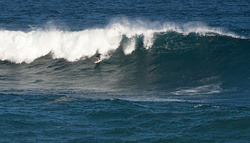 Wider View of Howie, Coogee photo