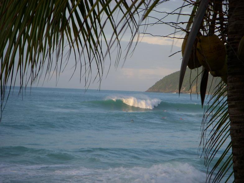 Tortola perfection