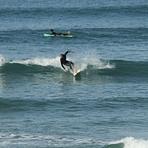 Original Surf Morocco, Tamghart