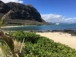 Waimanalo (baby makapu'u) photo