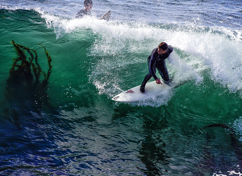 Kelp surfing at the Slot, Steamer Lane-The Slot