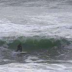 surfing @ shorty's, Oswald State Park/Short Sands