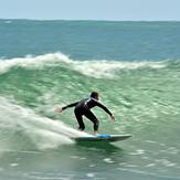 Movement, Raglan-Whale Bay