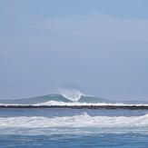 Mentawai Gem