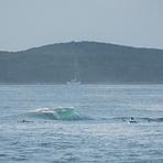 Island Days, Cronulla