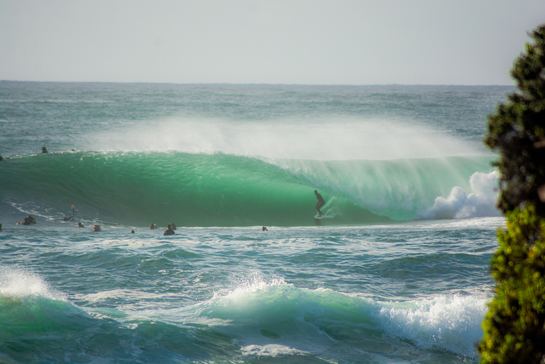 Wave of the Day. Island Challenge, Cronulla