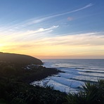 Wispy & Waves, Raglan-Whale Bay