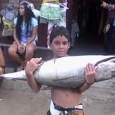 dia de atunes cuyagua