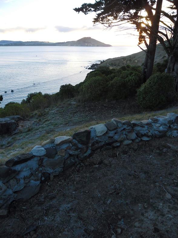 Pipeline (Dunedin)