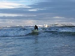 Surfing at Bethells, O'Neills Bay photo