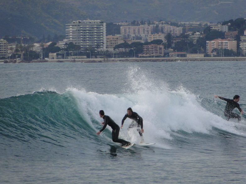 Reef working, Cannes
