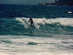 smallkine DK, Ironwood Beach photo