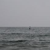 Stand up paddler (aka SUP), Gillis