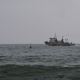 Stand up paddler meets fishing boat, Gillis