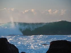 Windang Island photo