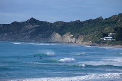 Schools and Stock Route from Pines, Wainui Beach - Schools photo