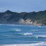 Schools and Stock Route from Pines, Wainui Beach - Schools