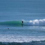Glassy Pines Surf, Wainui Beach - Pines