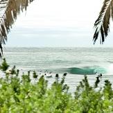 Shark Island Challenge, Shark Island (Cronulla)