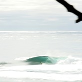 Shark Island (Cronulla)