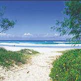 Pottsville Beach